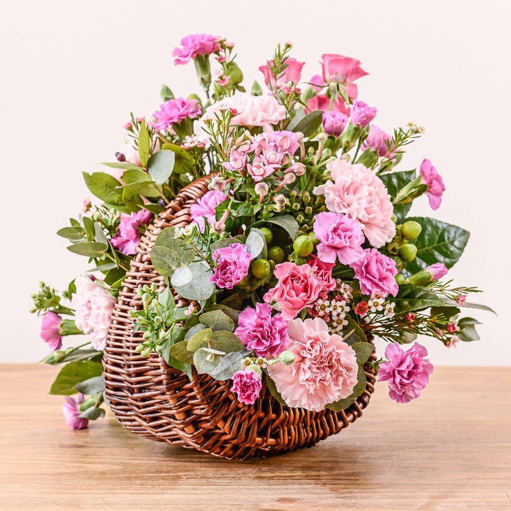 Sienna   Rocamaer Flowers